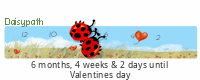 Daisypath Valentines tickers
